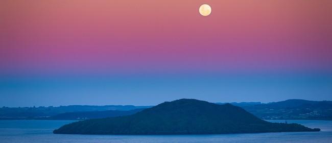 Aotearoa – Our Home, Our Life