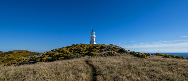 Pencarrow Lighthouse: Talk and Cycle Trip