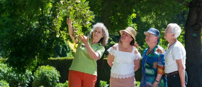 Christchurch Botanic Gardens Guided Walks