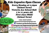 Kids Capoeira Classes Term 4