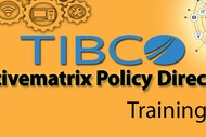 tibco activematrix policy director training online