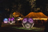 The Enchanted Ball Supporting Te Mata Park