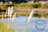 Motueka Have Your Say: Environment Plan