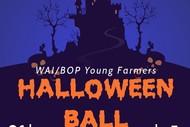Wai/Bop Young Farmers Ball