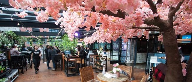 Spring Blossom Wonderland 2020