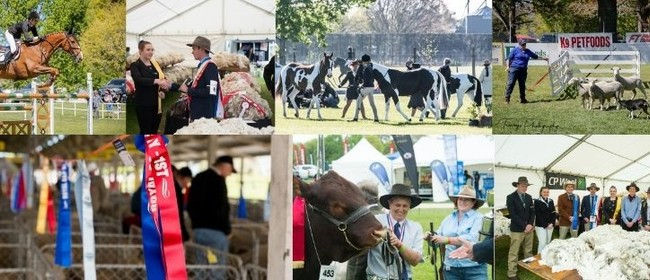 2020 Hawke's Bay A&P Show: New Format