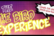 The Luke Bird Experience
