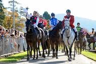 Rotorua Race Course Christmas at The Races