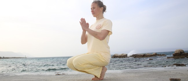 Yoga Class Level 2 - 4