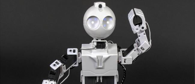 Coding JD Humanoid Robots