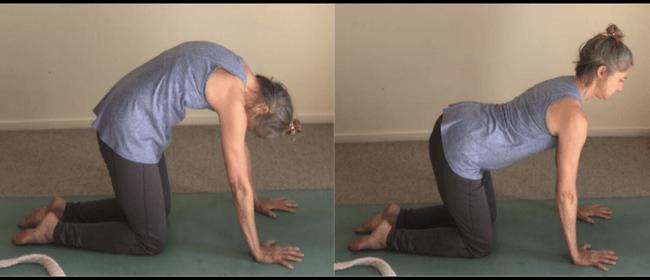 Yoga with Kaye
