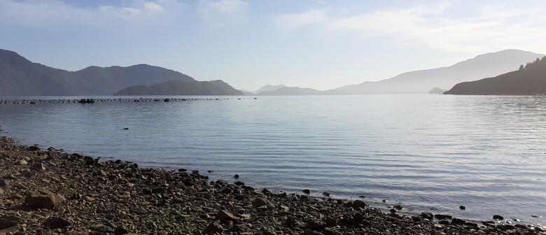 Exclusive Day Excursions in the Marlborough Sounds