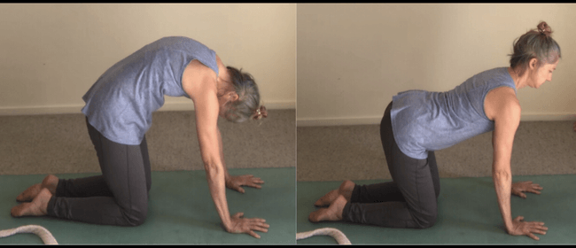 Yoga with Kaye - Takanini