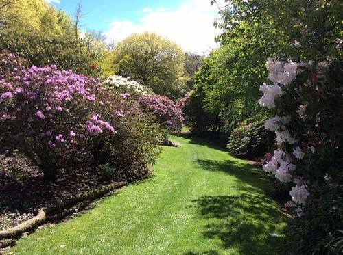Heritage Park Rhododendron Garden