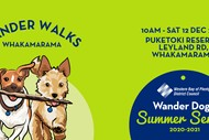 Puketoki Reserve - Wander Dogs walk