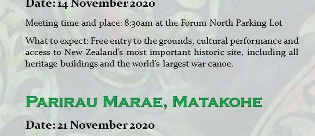 Cultural Journey: Waitangi Treaty Grounds