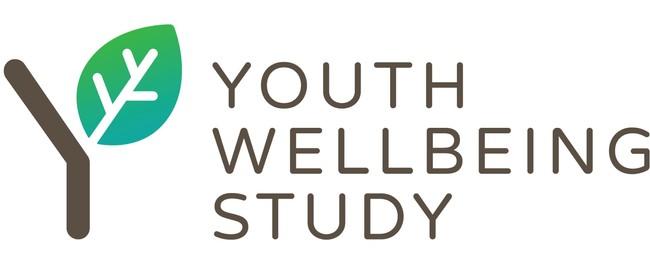 Youth Wellbeing Study Workshop 2020