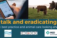 Tech Talk and Eradicating BVD - South Waikato