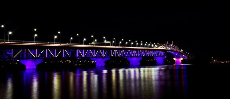 Vector Lights - Diwali