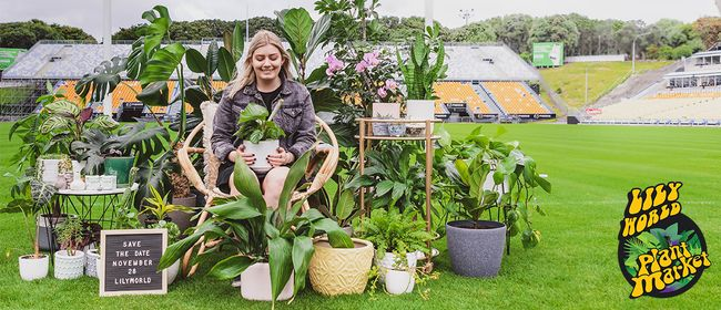 Lilyworld Plant Market