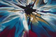 Colour Explosion Exhibition by Terri Dangen