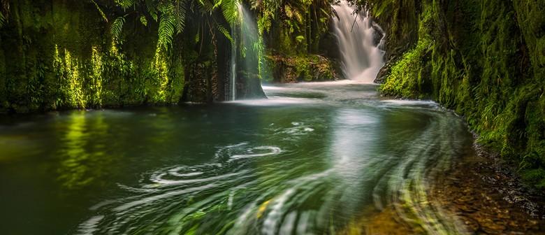 Weekend Kaimai Waterfall Workshop