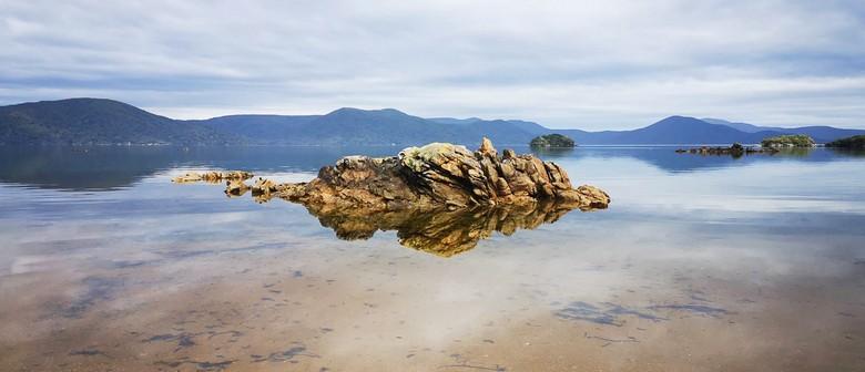 Stewart Island Photography Tour - 4 Days