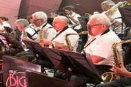 A Salute To The Services Concert - Hawkes's Bay Jazz Club Bi