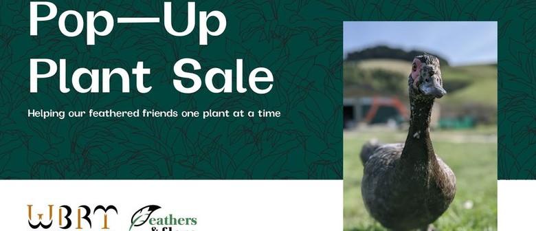 Feathers & Flora Pop Up Plant Sale