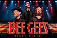 Image for event: The Bee Gees Night Fever