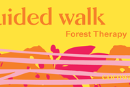 Forest Therapy Walk