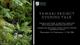 Tawaki Fiordland Crested Penguin Talk