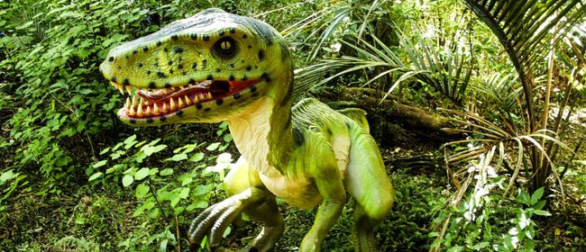 DinoFest Auckland