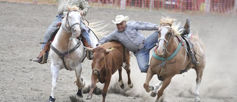 Gisborne Rodeo