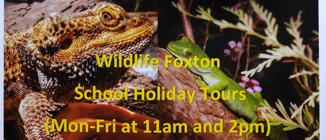Forgotten Fauna Tours