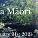 Introduction to Rongoā Māori - Level One