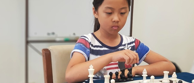 Chess Lovers Holiday Program