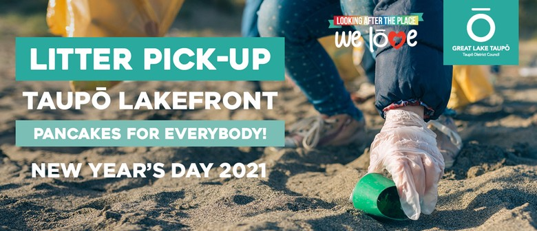 New Year's Day Litter Pick-up