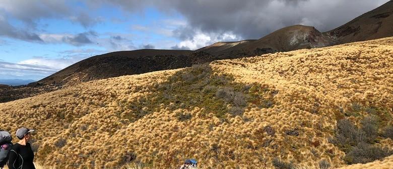 Te Maari Eruption Landslide, Blast and Lahars