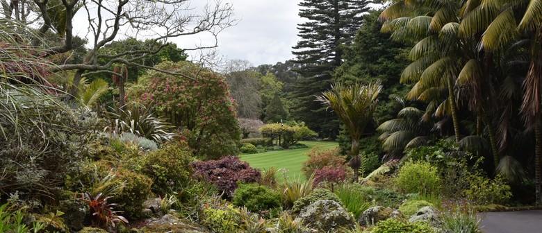 Government House Auckland - Garden Tour