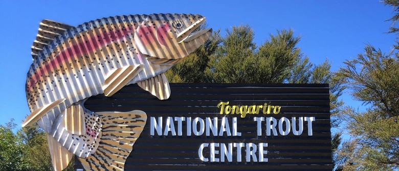 Tongariro National Trout Centre Night Tour