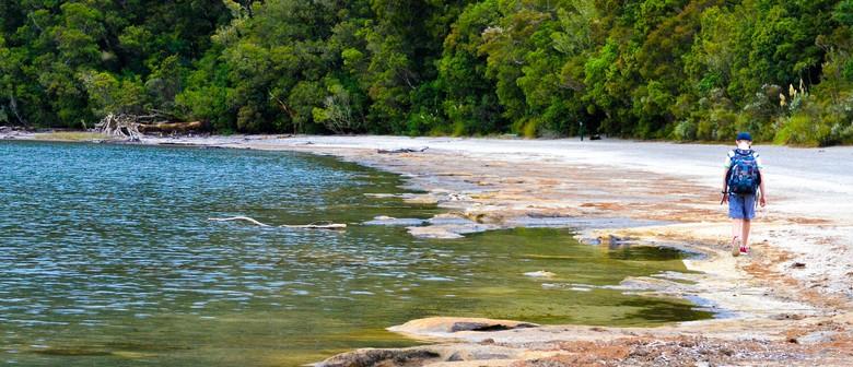 Lake Rotopounamu Walk