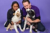 Mindfulness4dogs Puppy Preschool Classes
