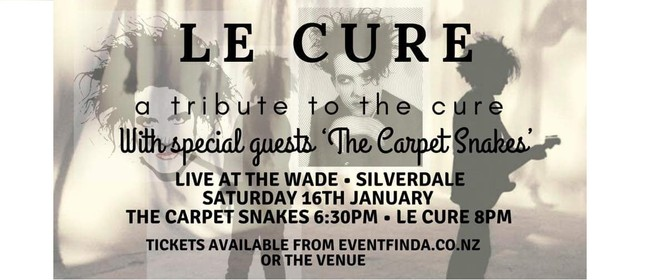 """LeCure """"The Cure"""" Tribute show"""