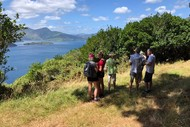 Wellness Day in the Marlborough Sounds