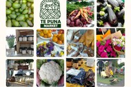 Te Puna Market Summer 2021