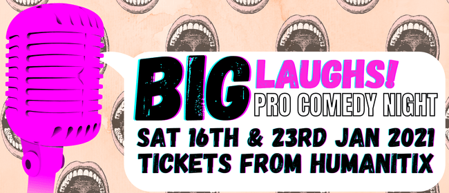 Big Laughs Pro Comedy Night!