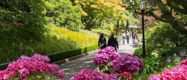 Herb Garden Walk