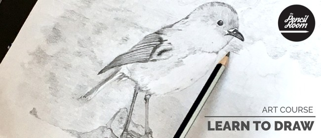 Learn To Draw (Art Course)