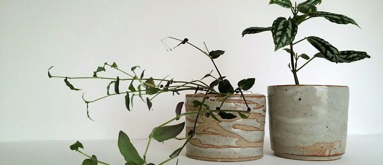 Make A Planter Pot - 1-Day Workshop w Siriporn Falcon-Grey
